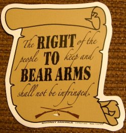 13-right-to-bear-arms